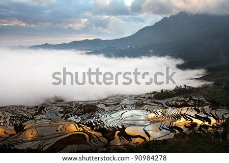 Sunrise at Yuan Yang Rice terraces, Duoyishi, Yunnan, China