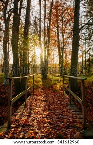 Sunrise bridge leading into the autumn park  - stock photo