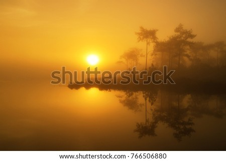 Sunrise golden tree reflection on the lake in Phukra Dueng National park Loei Thailand.