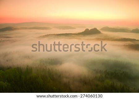 Sunrise in a beautiful mountain of Czech-Saxony Switzerland. Sandstone peaks increased from foggy background, the fog is orange due to sun rays.  - stock photo