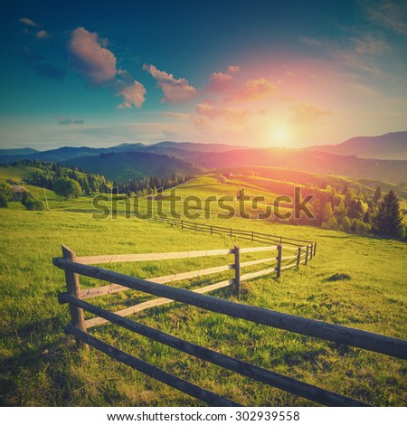 Sunrise in a Carpathians mountain village meadow, covered with fresh spring grass. Vintage colors - stock photo