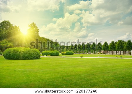 Sunrise in beautiful park                                     - stock photo