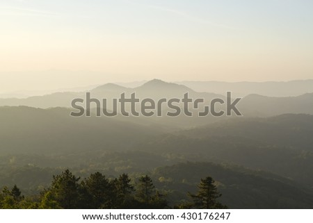 Sunrise in early morning with fog light in the misty forest atop Doi Inthanon in Chiang Mai, Thailand