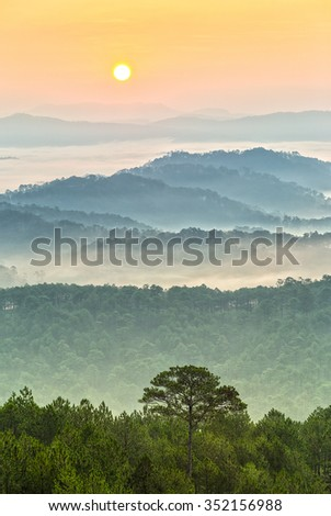Sunrise in highlands of Dalat when sun rises pink circle below dew covered pine trees and a pine tree leaning his loneliness symmetry with sun creating beauty in countryside dawn plateau - stock photo