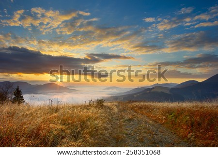 sunrise in mountains Carpathians, lit yellow grass and fog - stock photo