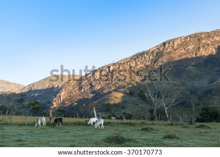 Sunrise in mountains in a ranch of Minas Gerais State - Brazil