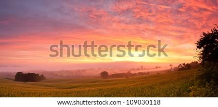 Sunrise in north east Iowa over corn field - stock photo