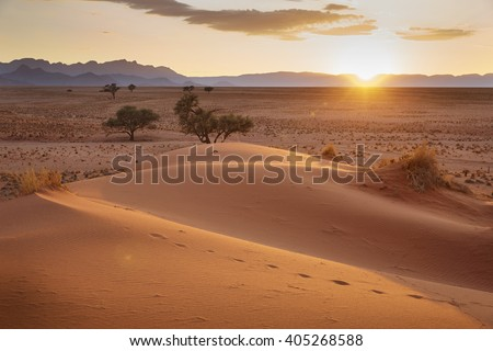 Sunrise in Sossusvlei, Namibia, Africa. - stock photo