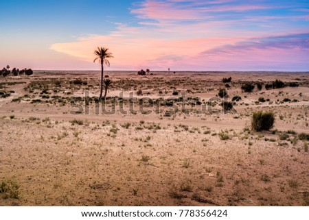Sunrise in the desert near Douz in Kebili, Tunisia