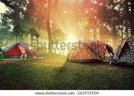 Sunrise in the forest and the tents in vintage style - stock photo