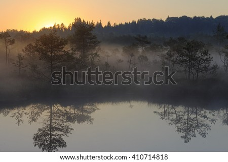 Sunrise in the misty bog during summer - stock photo