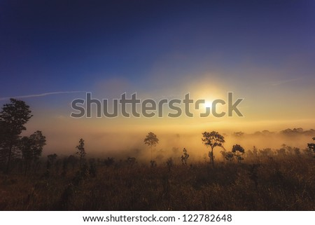 Sunrise in Tung salang luang - stock photo