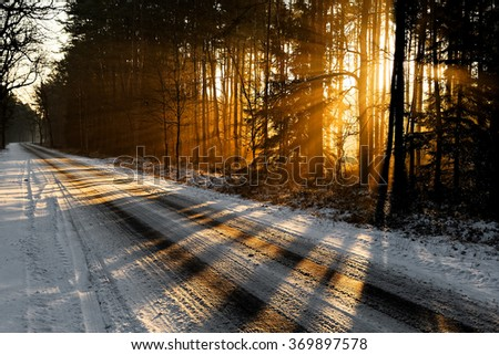 Sunrise in winter forest - stock photo
