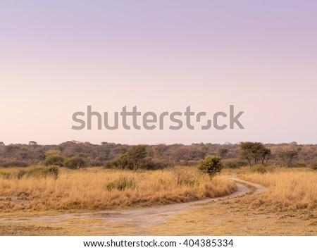 Sunrise landscape scenic on the African plains in Botswana - stock photo