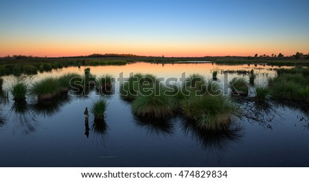 Sunrise on a small lake with grass at the foreground. nobody