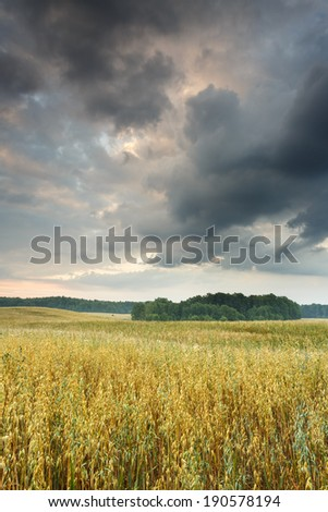 Sunrise on north Polands field.Pomerania district/Sunrise - stock photo