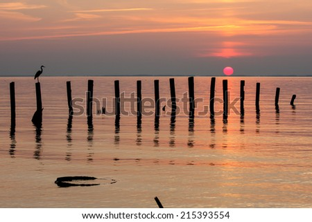 Sunrise on the Chesapeake Bay along the western shore in Calvert County, Maryland.