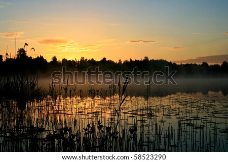 Sunrise over a marsh
