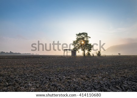 Sunrise over barren fields with a lonely tree and shed. - stock photo