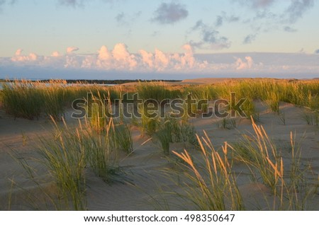 Sunrise over dunes in Nida