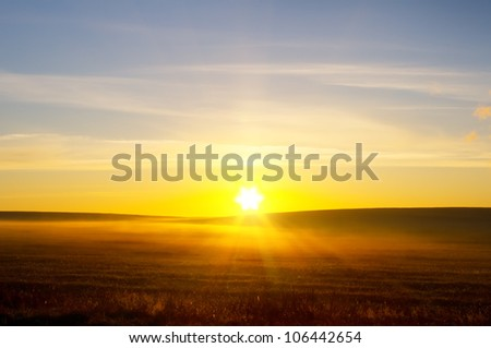 sunrise over summer field. Nature composition. - stock photo
