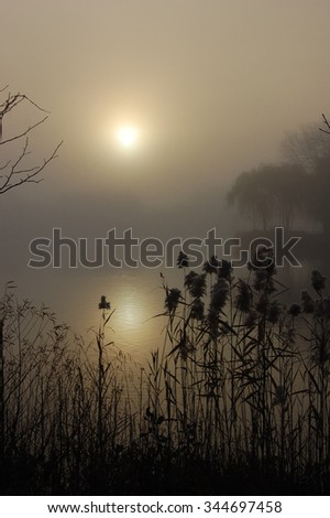 Sunrise over the lake on a foggy morning.