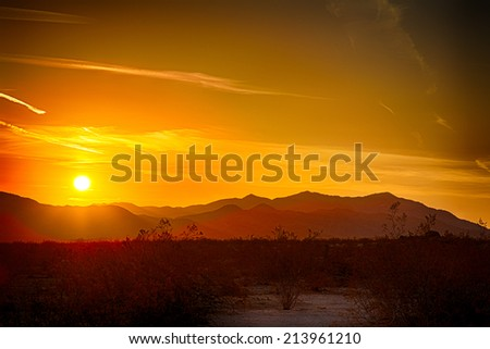 Sunrise over the Mojave Desert in Joshua Tree National Park, California. - stock photo