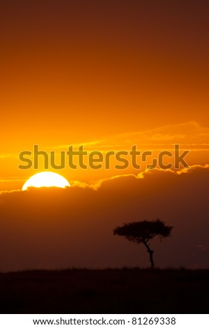 Sunrise over the plains of East Africa, Maasai Mara National Reserve, East Africa - stock photo