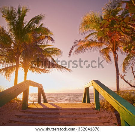 Sunrise summer scene in Miami Beach Florida with a path going to the ocean and beautiful palm trees, Instagram desaturated filter for retro looks   - stock photo