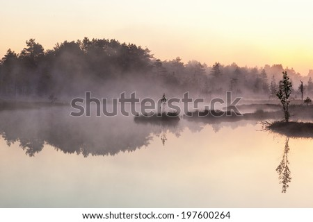 Sunrise with mist over a lake at the wetlands - stock photo