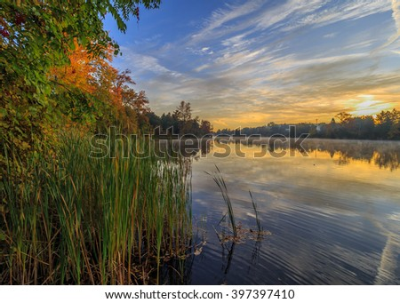 Sunrise with reeds