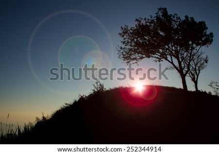 Sunrise with silhouette  of tree on the mountain. - stock photo