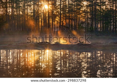 Sunrise with sunbeams through the woods by the lake - stock photo