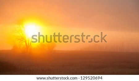 sunrise with the mist over the forest in central Russia in the autumn - stock photo