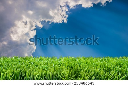 Suns rays beaming on lawn behind clouds