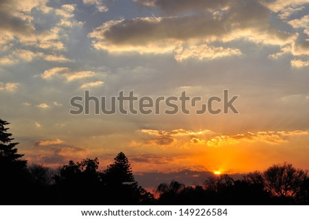 Sunset Above Forest