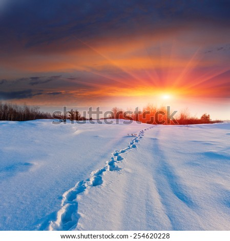 Sunset and pathway on snowy meadow - stock photo