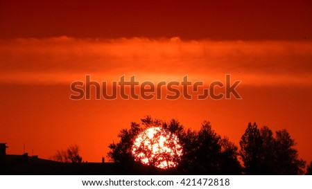 Sunset and tree