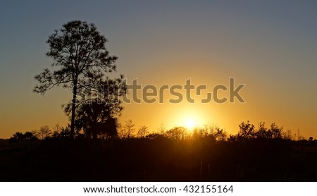 Sunset at a Campground in Big Cypress National Preserve - stock photo
