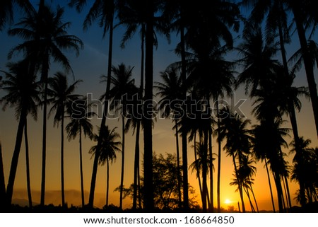 Sunset at a tropical beach in Asia. - stock photo