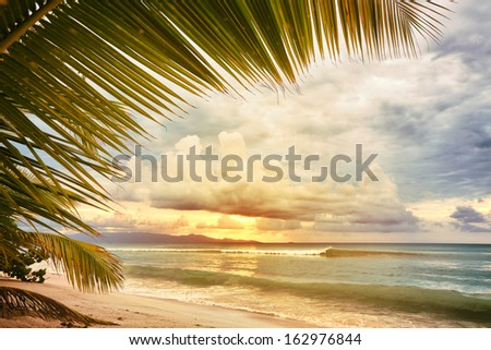 Sunset at caribbean sea beach, view through palm tree leaves, vintage processing - stock photo