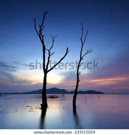 Sunset at death trees with fear in the lake of thailand - stock photo