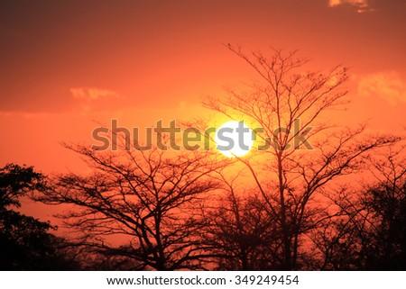 Sunset at Kwando River. Caprivi Strip, Namibia - stock photo