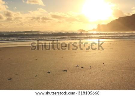 Sunset at sandy beach ,Sorrento, Mornington Peninsula,Victoria, Australia - stock photo