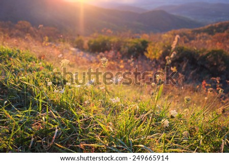 Sunset at Shenandoah national park in autumn - stock photo