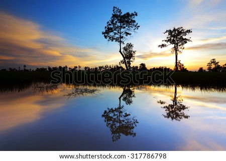 Sunset at silhouette with trees reflecting in water - stock photo