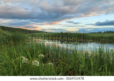 Sunset at the river. Bright colourful sunset. A green grass at the river in the summer during a sunset - stock photo