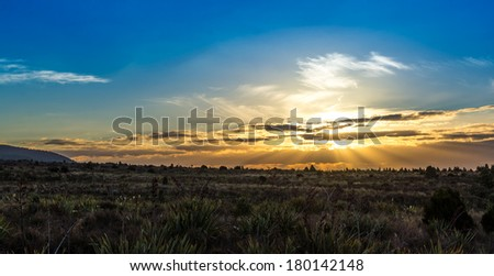 Sunset beautiful fields, North Island - New Zealand - stock photo