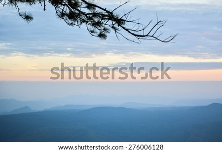 Sunset behind the trees in the winter - stock photo