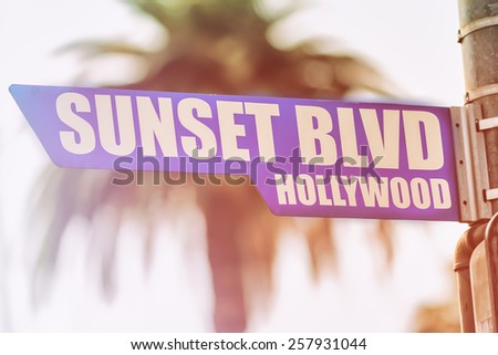 Sunset Blvd Hollywood Street Sign. A street sign marking Sunset Blvd in Hollywood, California. Backed by a palm tree with a sunset flare. - stock photo